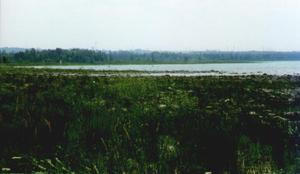 Baie de Dore